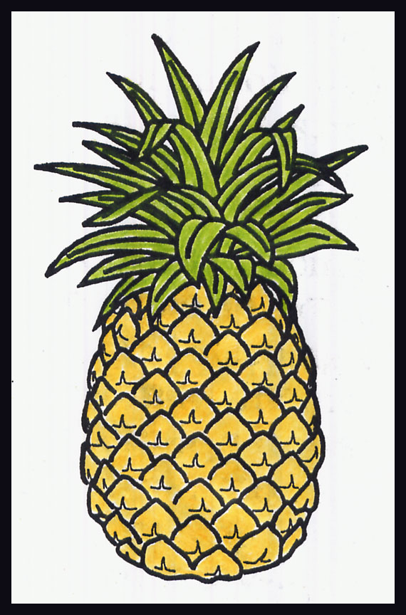 570x864 How To Draw A Pineapple British Israel.us
