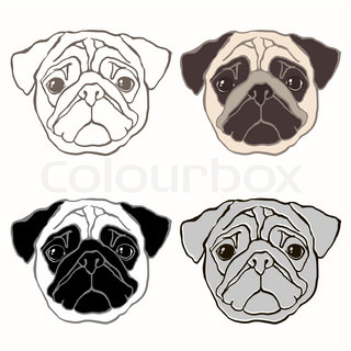 320x320 Fat Pug Dog Looking Down. Vector Clip Art Illustration With Simple