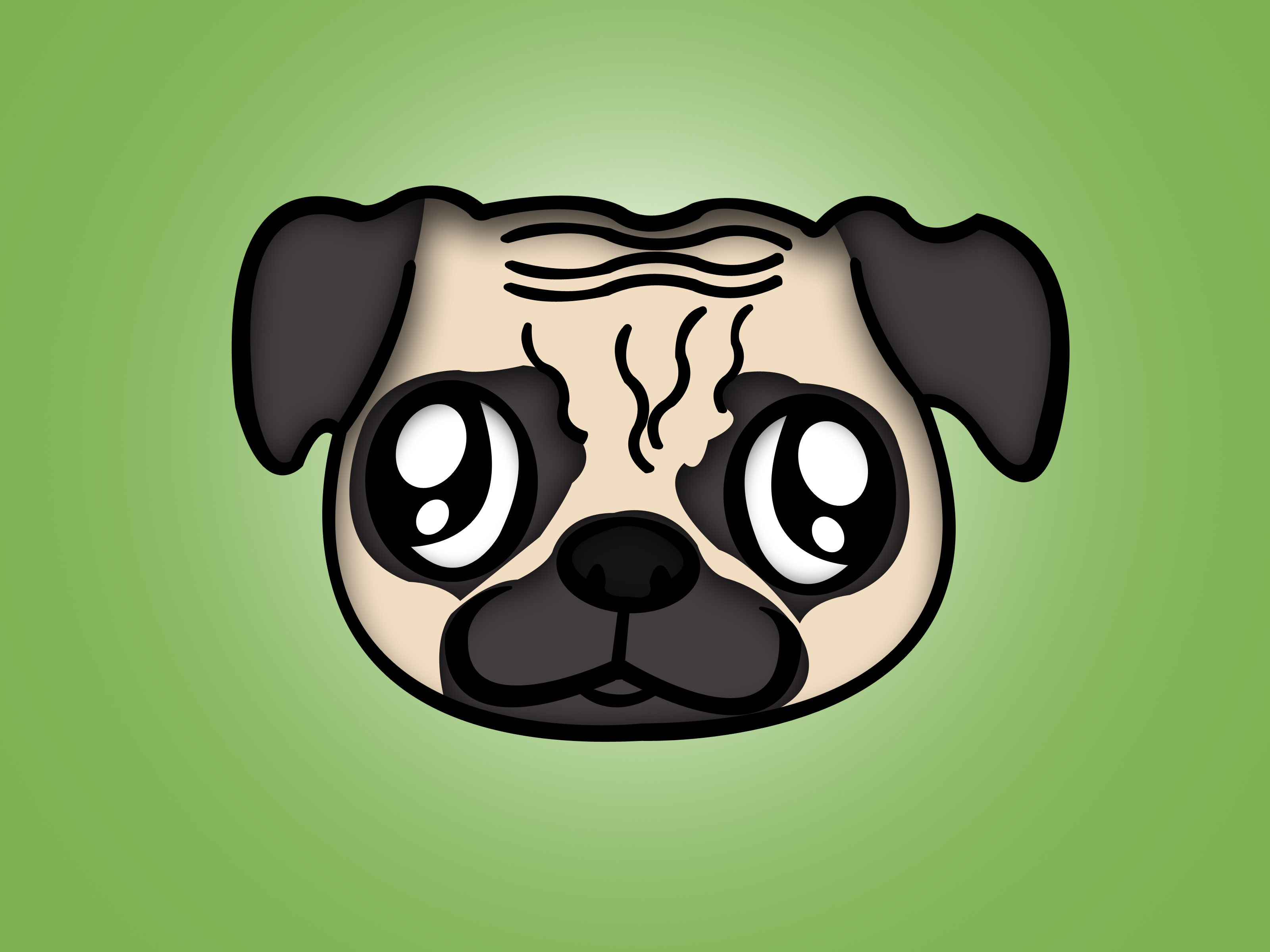 3200x2400 How To Draw A Pug 7 Steps (With Pictures)