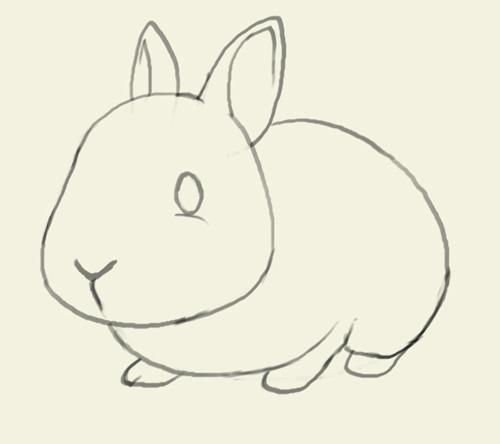 500x444 How To Draw Bunny