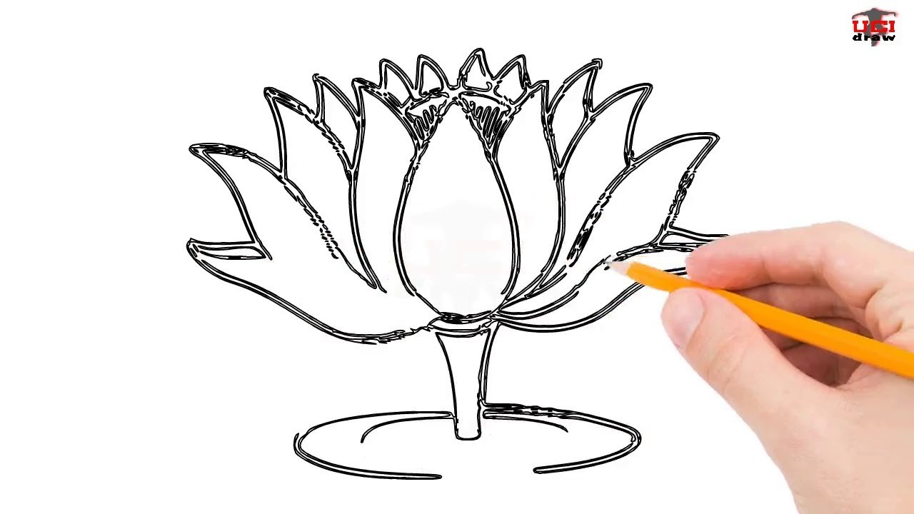 1280x720 How To Draw A Lotus Flower Step By Step Easy For Beginnerskids