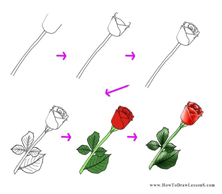 Simple Rose Drawing Tutorial at GetDrawings   Free download