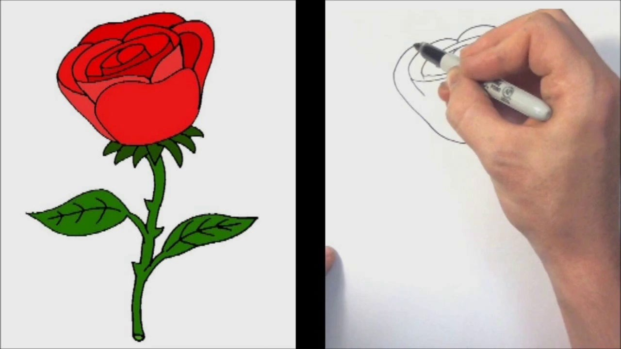 Simple Rose Flower Drawing At Getdrawings Com Free For Personal