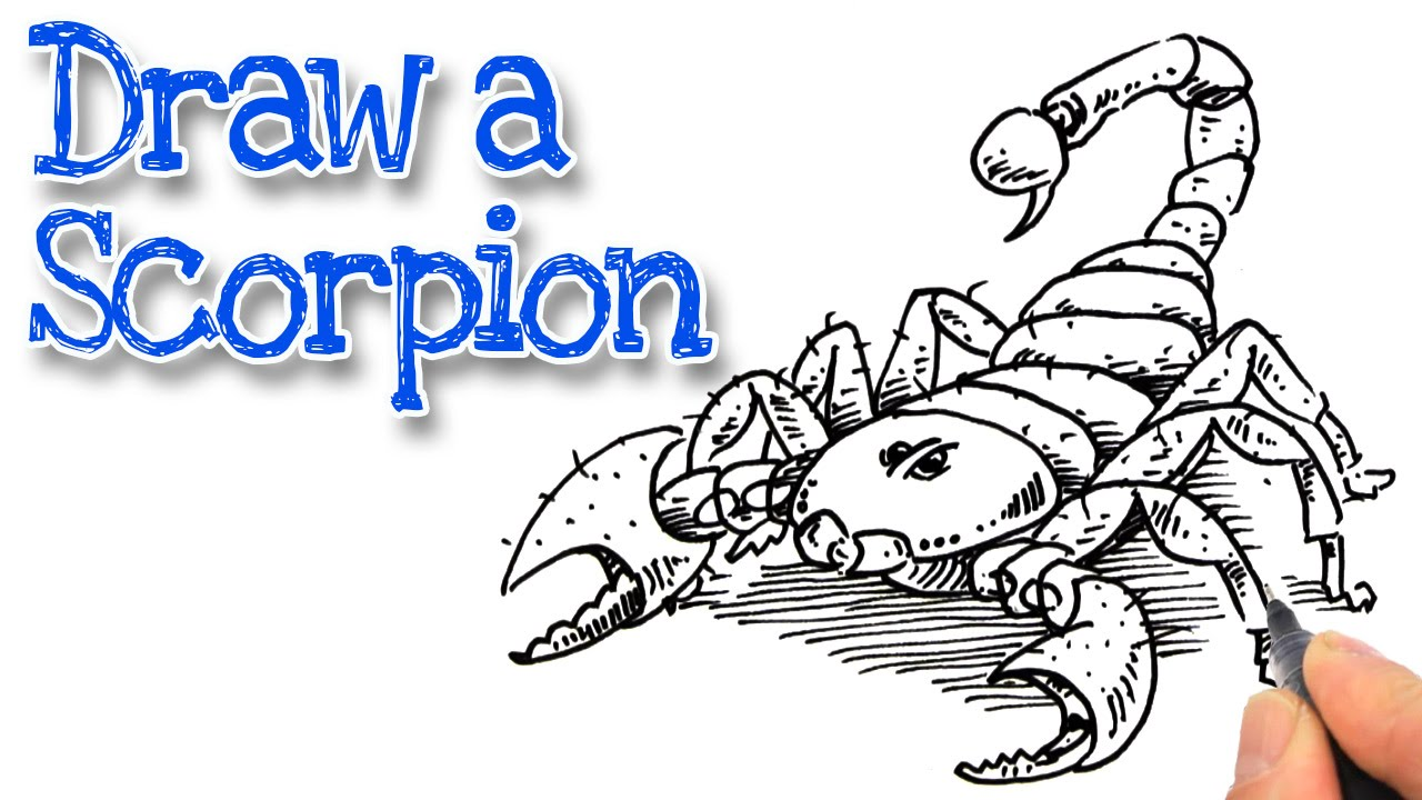 1280x720 How To Draw A Scorpion Real Easy