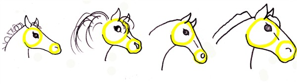 600x170 Drawing A Horse Head Step By Step