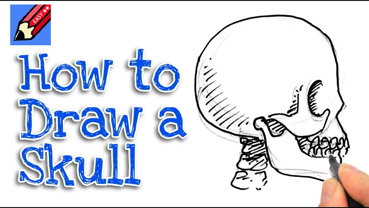 1280x720 Learn How To Draw A Skull From The Side Real Easy For Kids