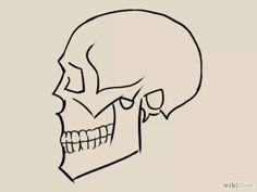 236x177 Skulls Drawings, Doodles And Drawing Ideas