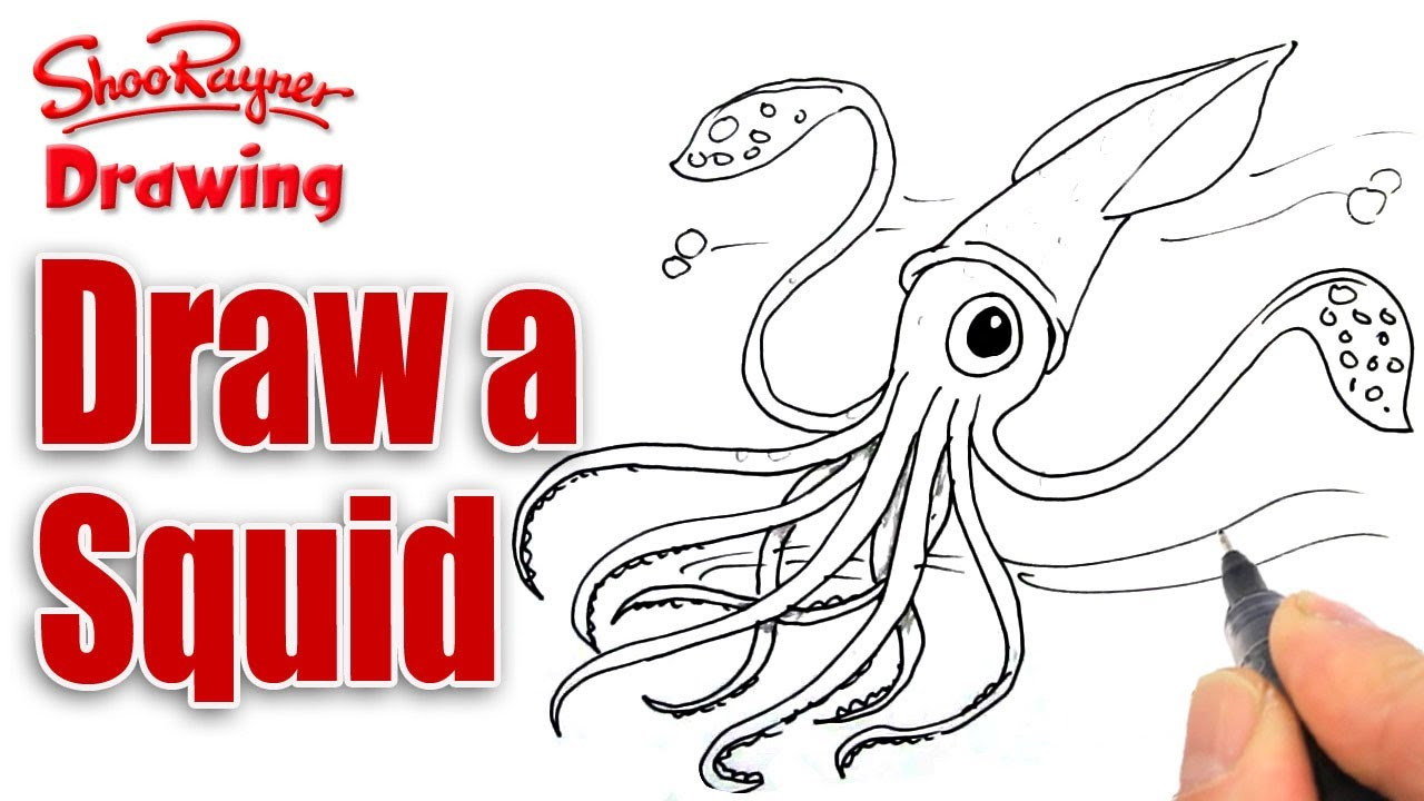 1280x720 How To Draw A Squid