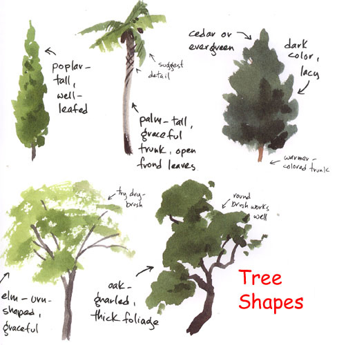 488x500 Tree Shapes Shapes, Watercolor And Watercolour Tutorials