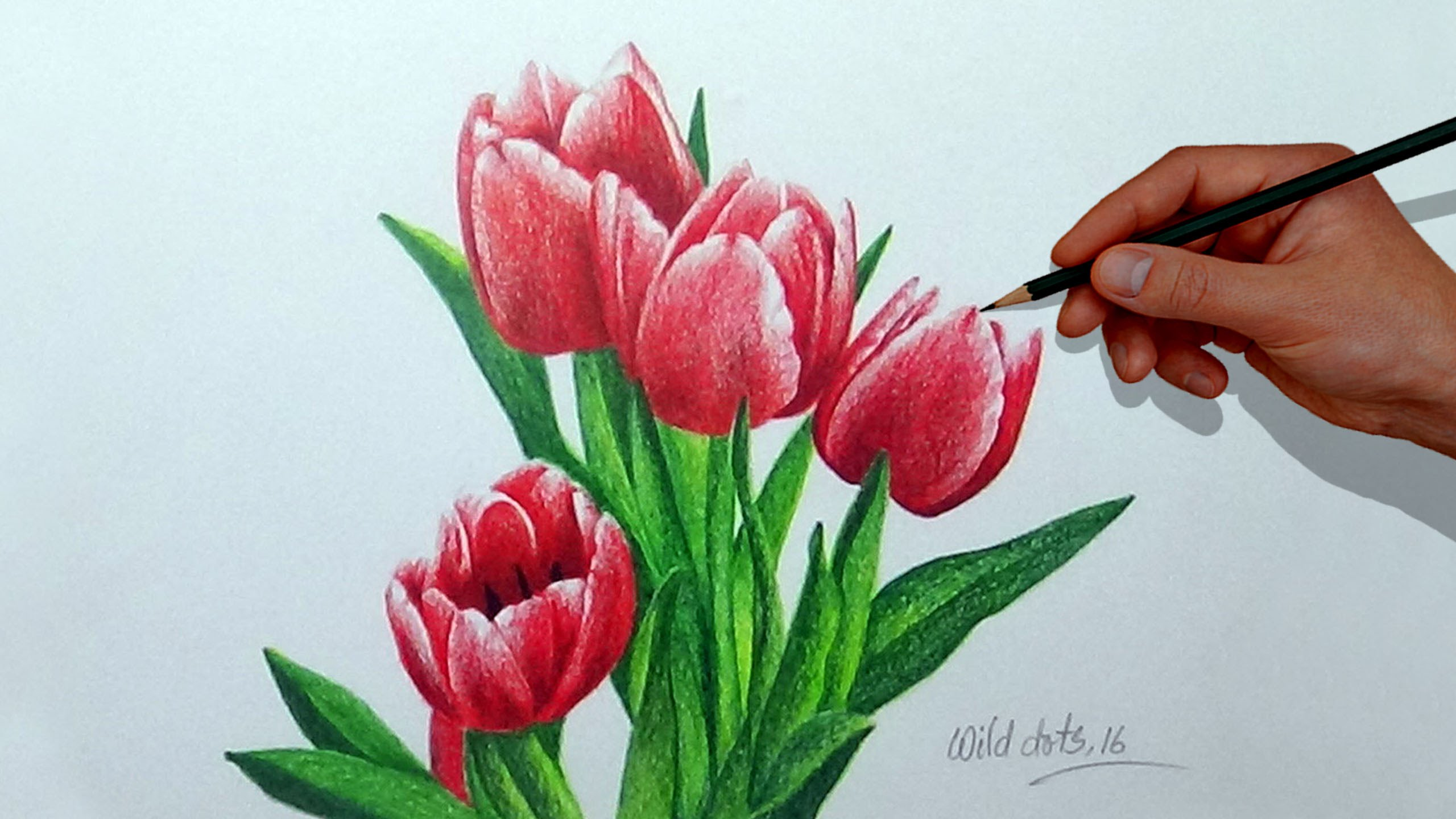 2560x1440 How To Draw A Flower With Simple Colored Pencils