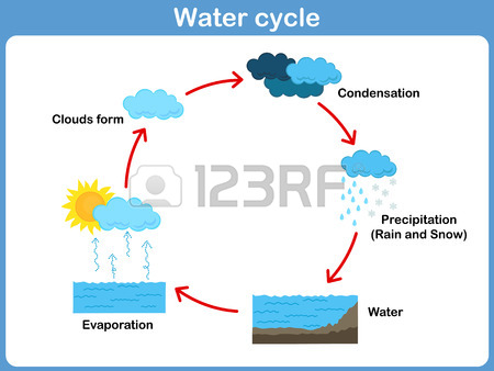 Simple water cycle drawing at getdrawings free for personal 450x338 schematic representation of the water cycle in nature ccuart Image collections