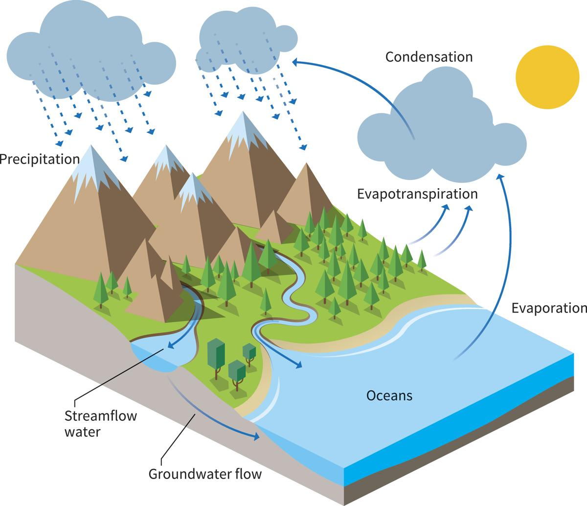 Simple water cycle drawing at getdrawings free for personal 1200x1033 water cycle project ideas ccuart Image collections