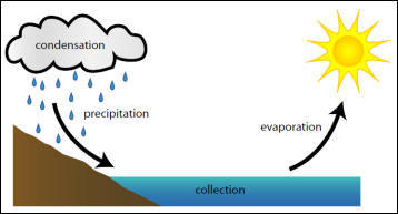 358x193 Water Cycle Thinglink Cycling, Teacher And Activities