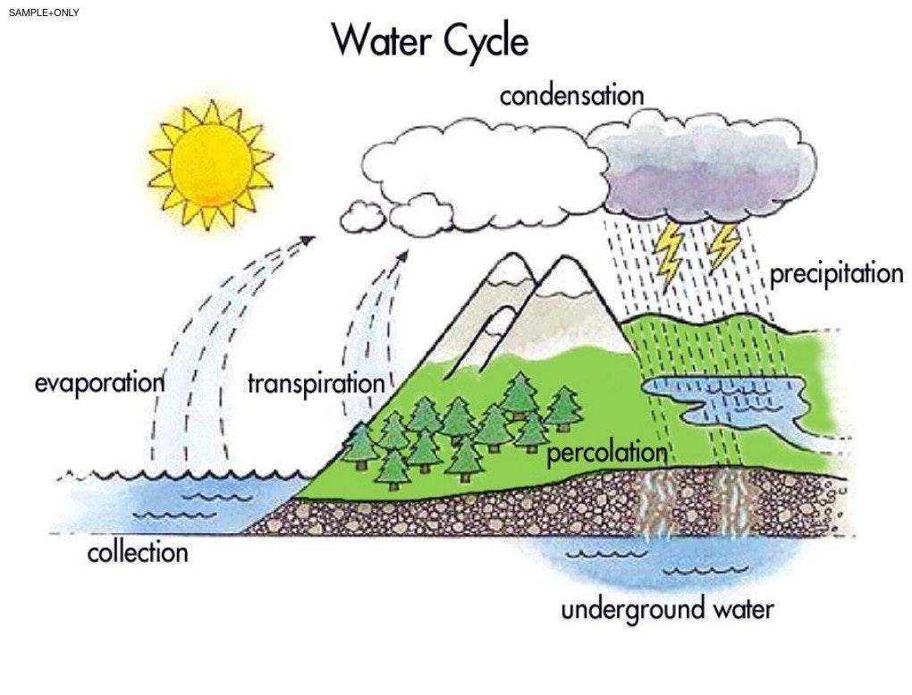 Simple Water Cycle Drawing At Getdrawings