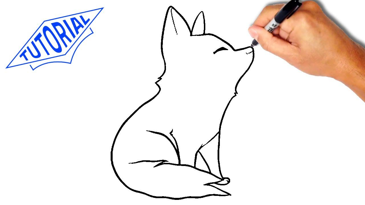 1280x720 How To Draw A Wolf Kids. Easy Step By Step Drawing Lessons