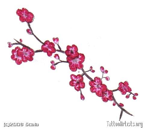 482x430 Cherry Blossom Treeblowing Windwall Decals Brian Bloom
