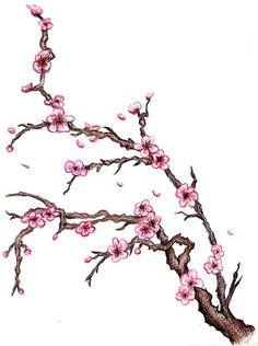 236x316 Ink On Cherry Blossom Tattoo Ideas