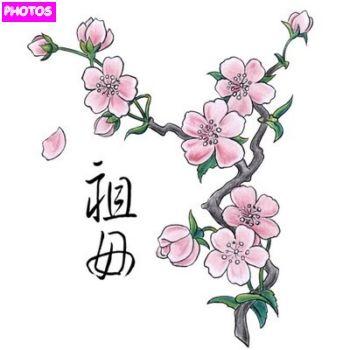 350x350 Cherry Blossom Drawing
