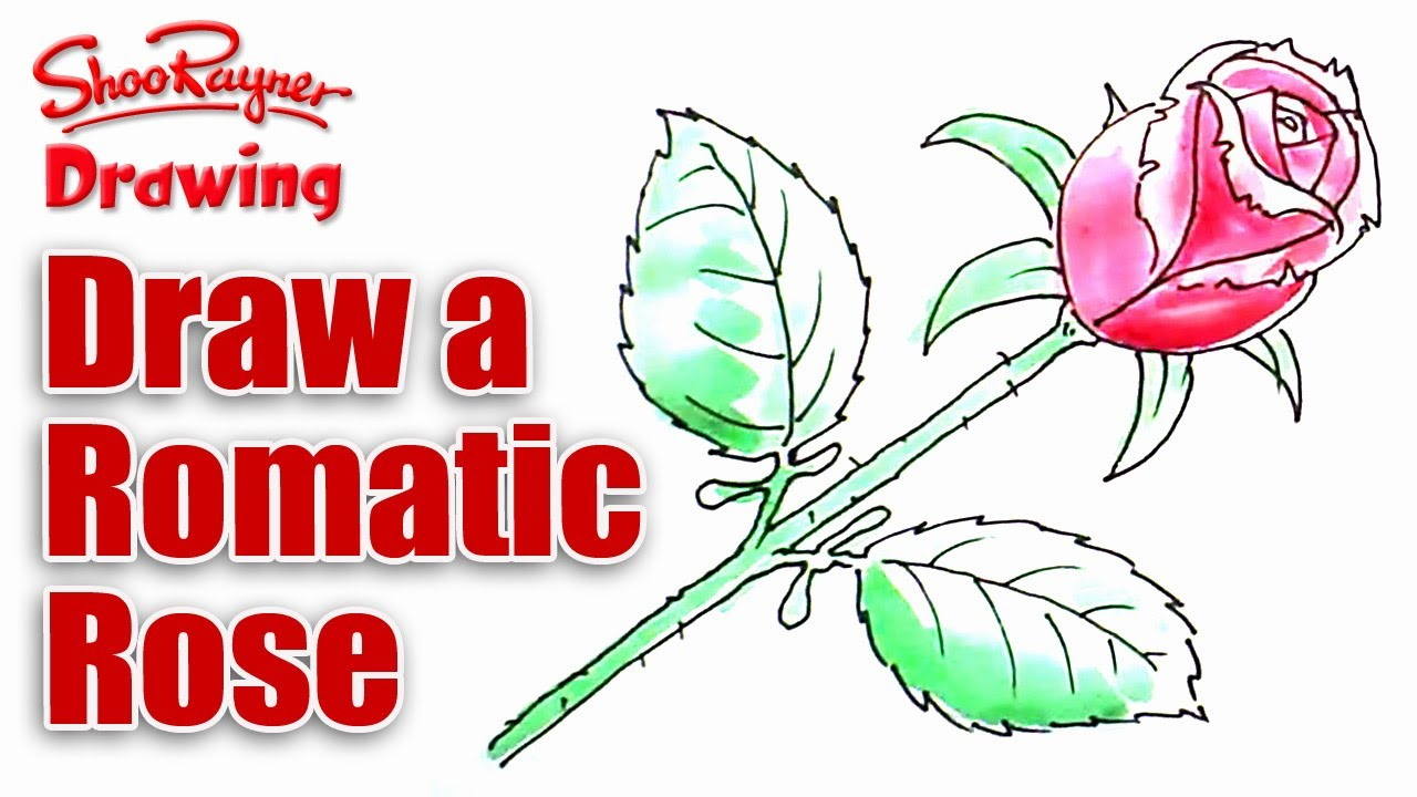 1280x720 How To Draw A Single Rose