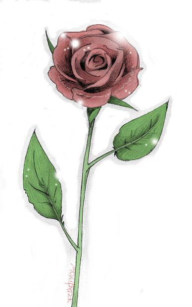 Single rose drawing at free for personal for Rose with stem tattoo designs