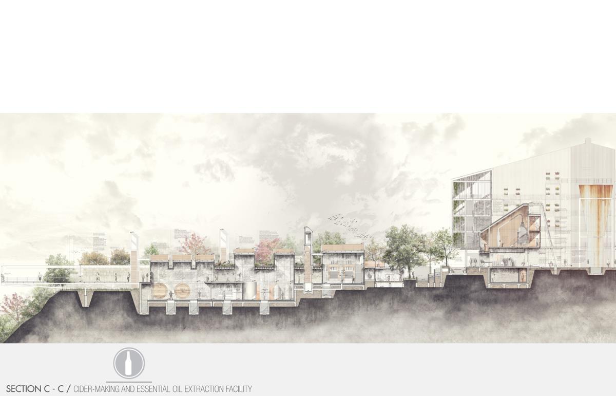 Landscape Architecture Online Portfolio Landscape