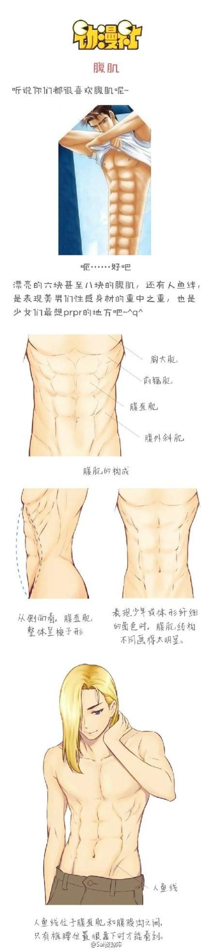 440x1962 Body Drawing