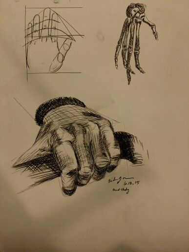 387x516 Crosshatching Hand Study. 60' Pose From The Model. Skeletal