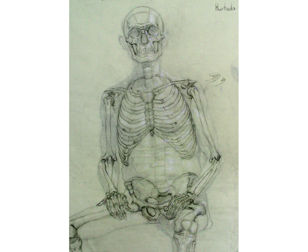 1000x818 Mark Skeletal Anatomy Anatomy For Drawing Anatomy