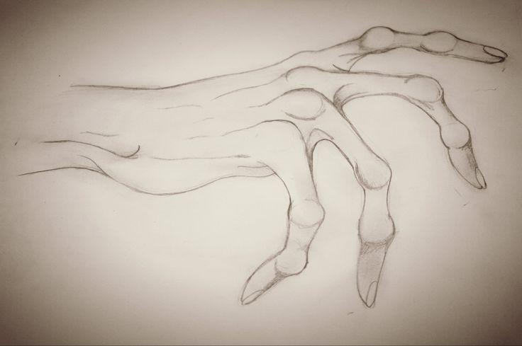 736x489 Drawing Skeleton Hand Artdrawing Skeletons, Draw