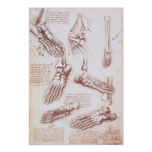 Skeleton Feet Drawing at GetDrawings.com   Free for personal use ...