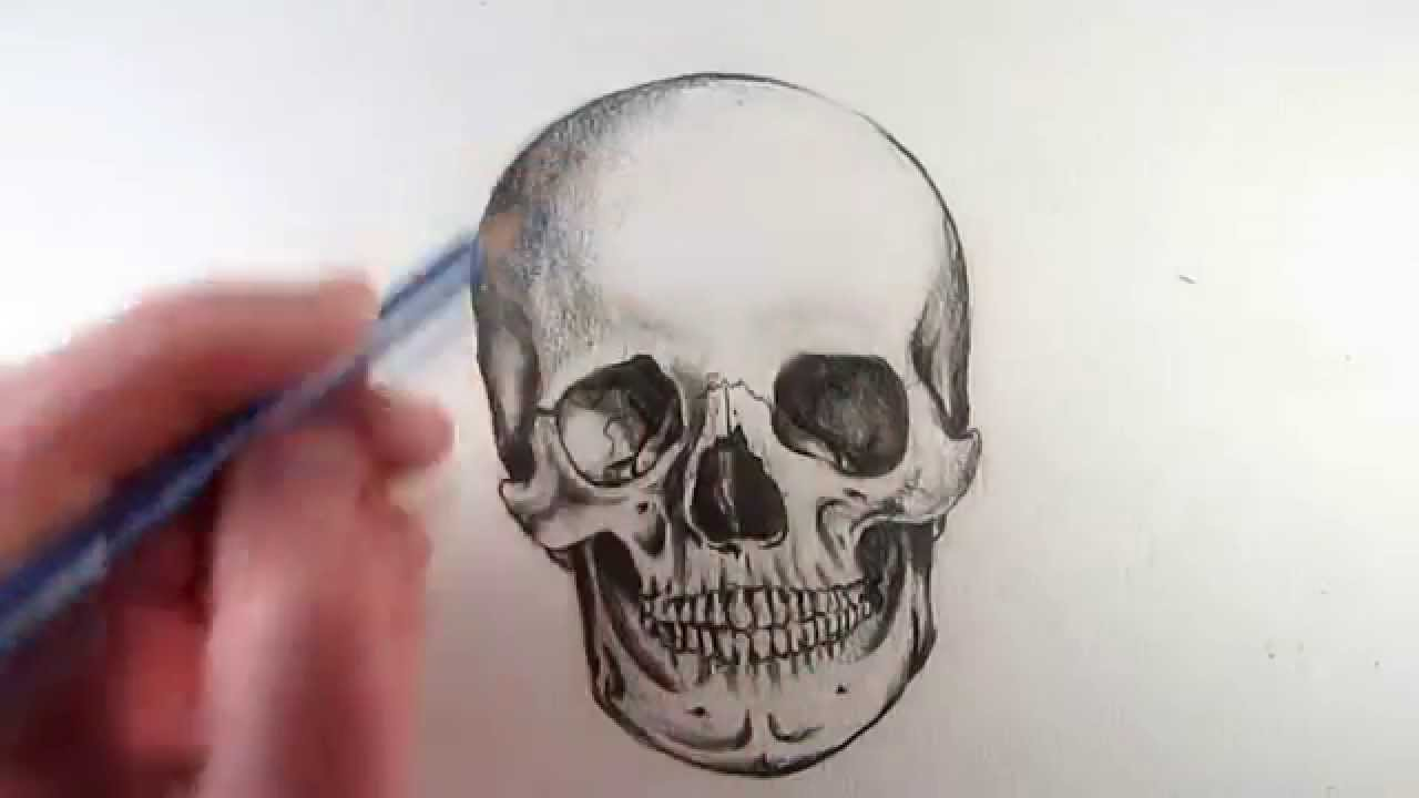 1280x720 How To Draw A Realistic Skull Narrated Step By Step