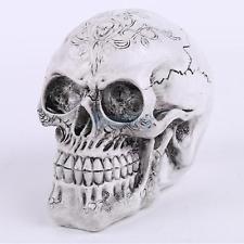 225x225 Realistic Model Anatomy Skull Head Drawing Figurine Statue