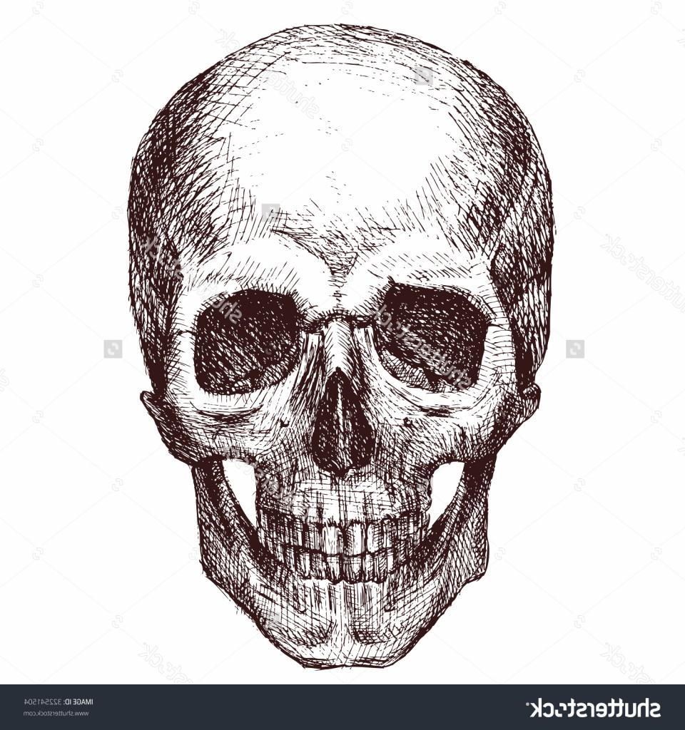 960x1024 Skeleton Head Drawing Drawn Sleleton Head