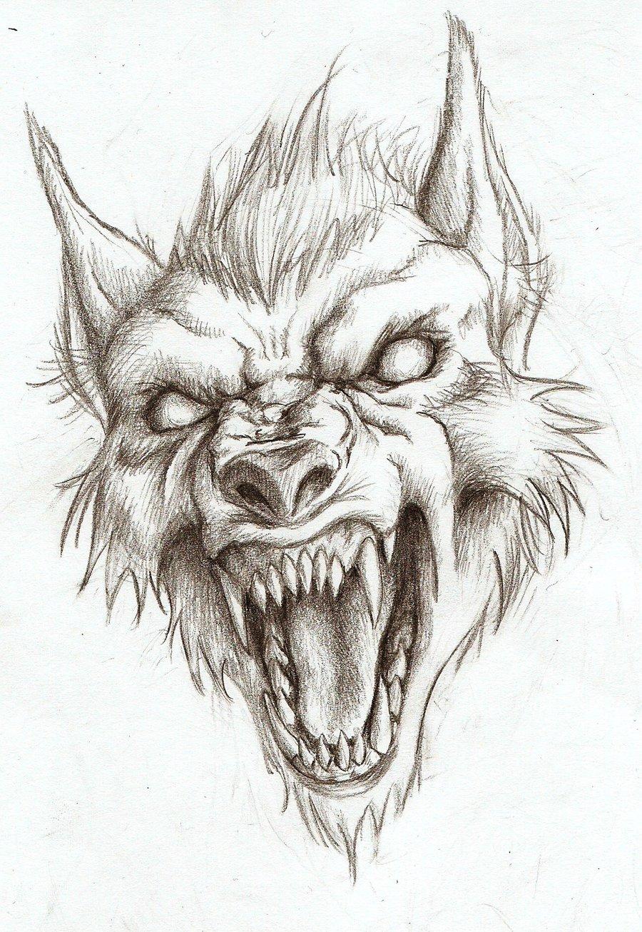 900x1306 Fantasy Pencil Sketches Werewolf Realistic Art, Pencil Drawing
