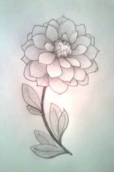 236x354 Easy To Draw Flowers Pretty Flowers By Redsommer For Details