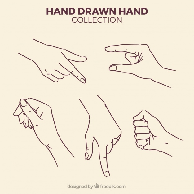 626x626 Hand Drawn Vectors, Photos And Psd Files Free Download