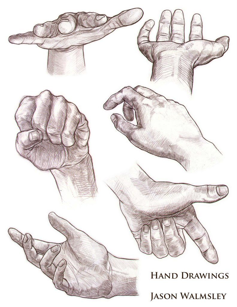 791x1024 Studies Of Hands And Feet. Col Erase(Brown) On Animation Paper Had