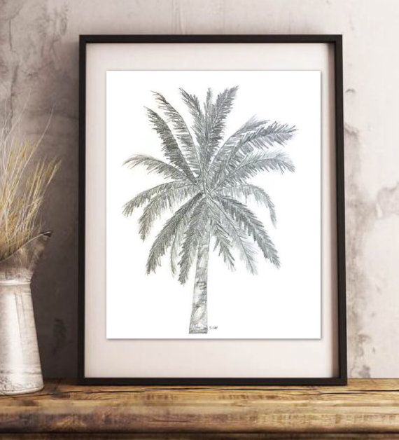 570x628 Original Pencil Sketch, Palm Tree Drawing, Palmtree Tropical