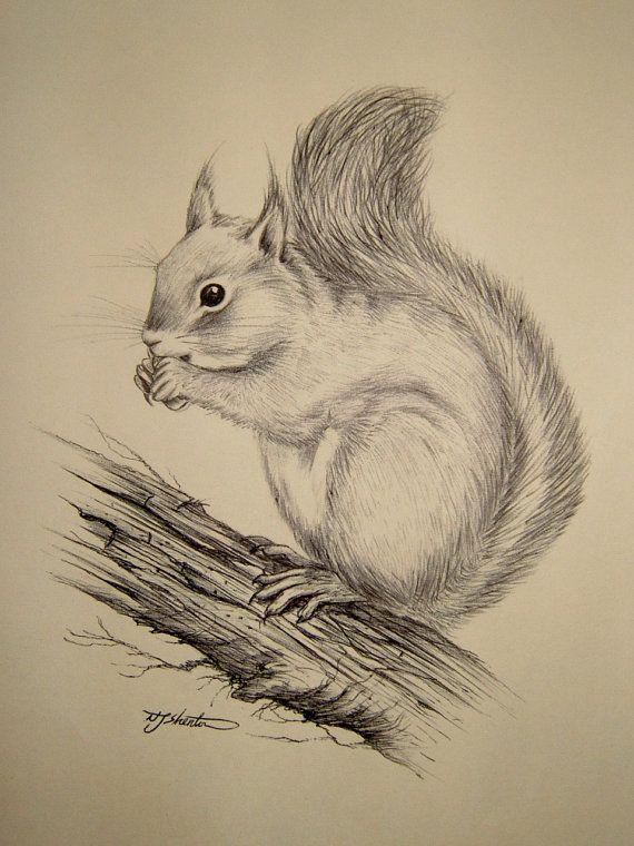 570x760 Drawing Or Sketching