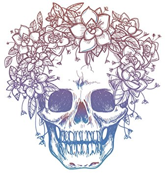 338x355 Pink Blue Ombre Skull with Flower Crown Drawing Vinyl