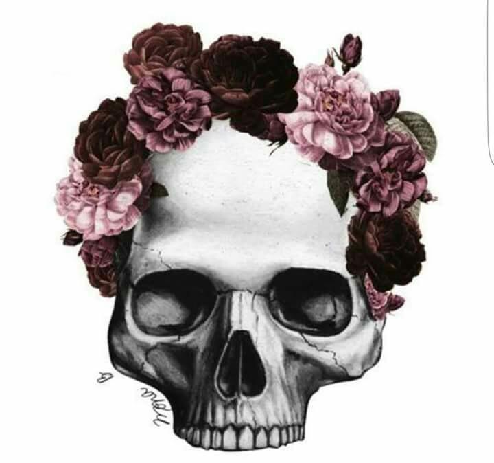 720x674 Floral Wreath Skull Skull