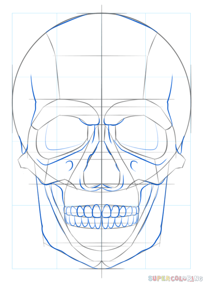 415x575 How To Draw A Human Skull Step By Step Drawing Tutorials