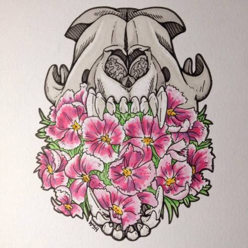 500x500 Animal Skull Drawing Tumblr