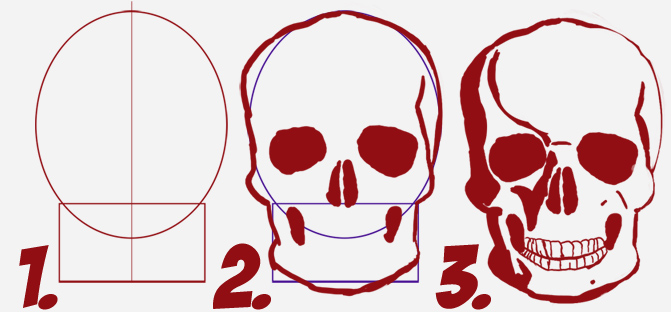 671x312 How To Draw A Skull