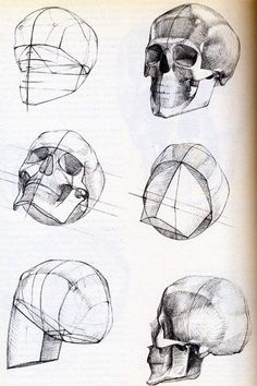 236x354 Human Anatomy 8 By Ivany86 On Caveiras Desenho