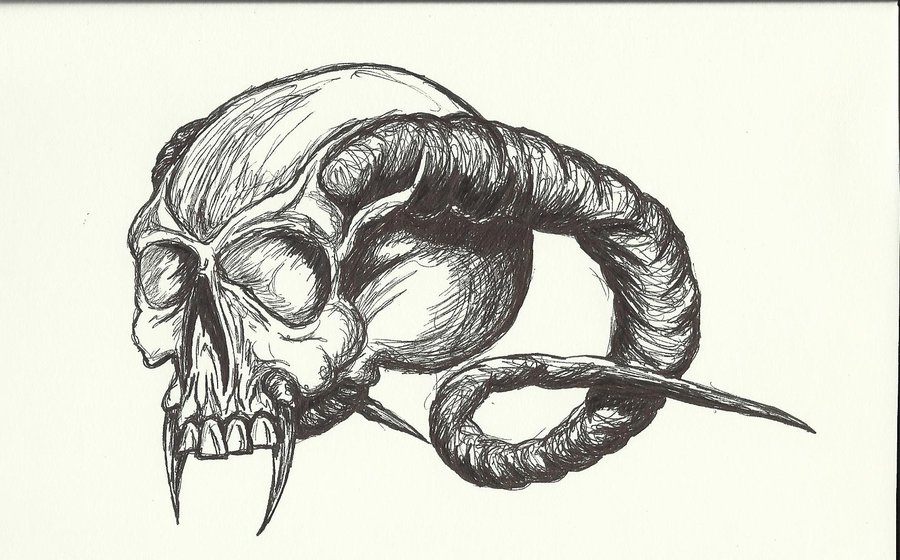 900x560 Horned Skull By Theloathedone