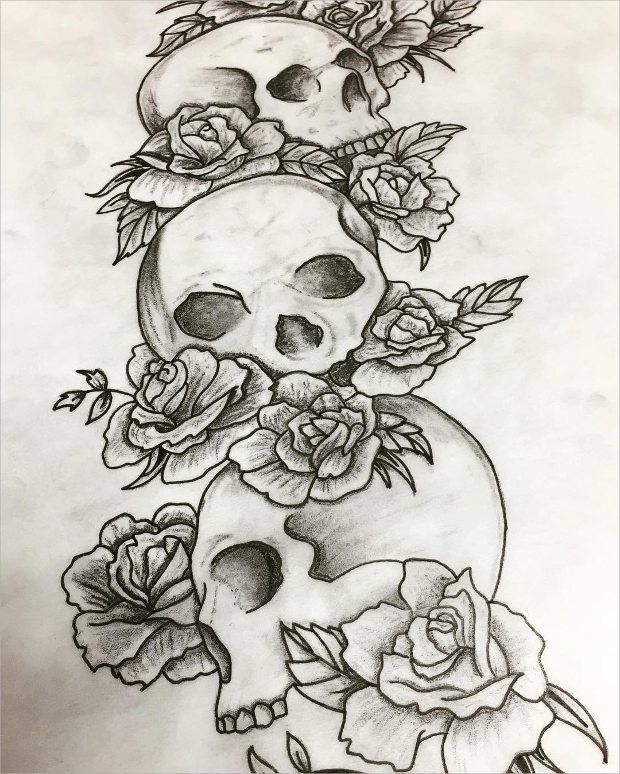 620x774 Rose Drawings , Sketches Design Trends