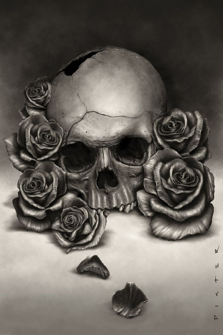 736x1104 Skulls And Roses Drawings Best Skulls And Roses Ideas