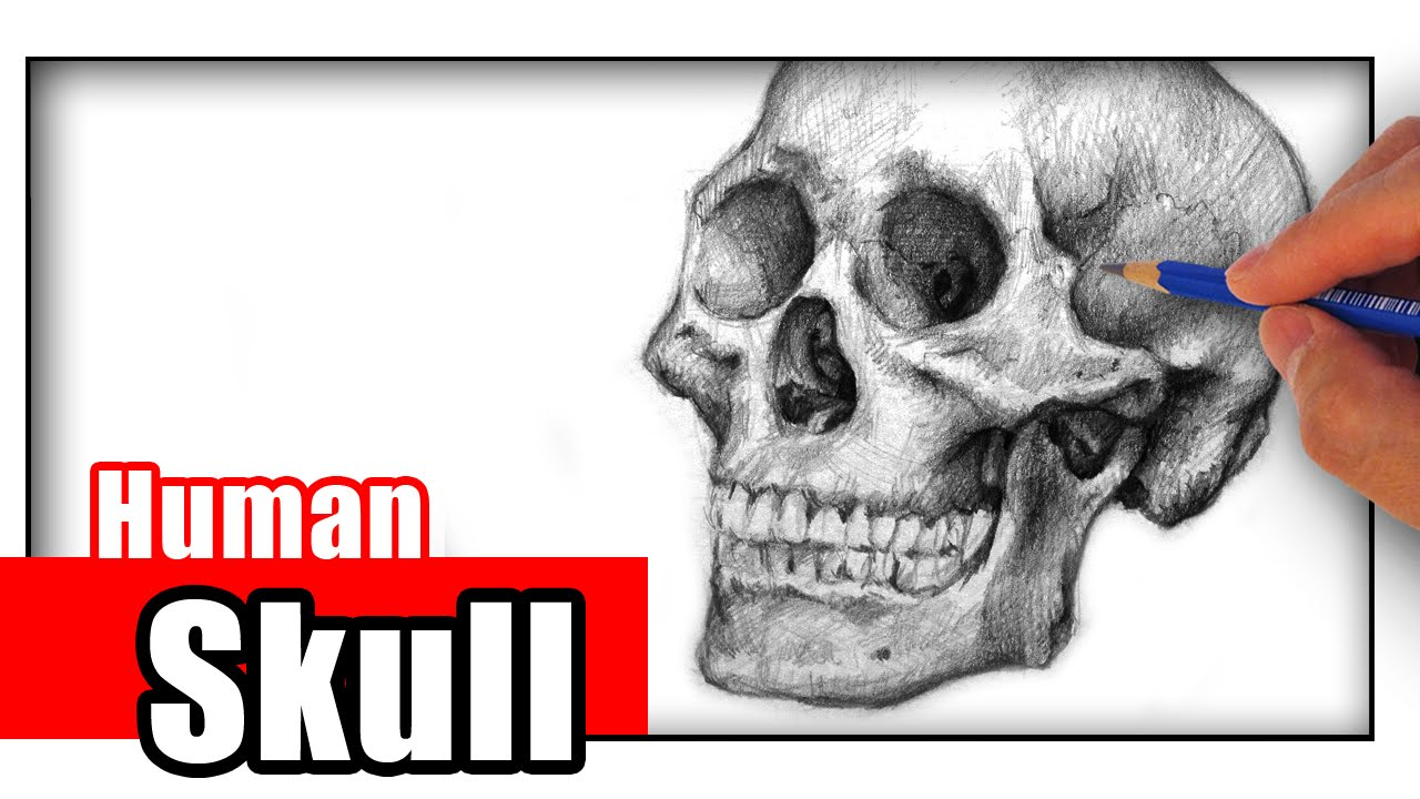 1280x720 How To Draw A Skull With Pencil