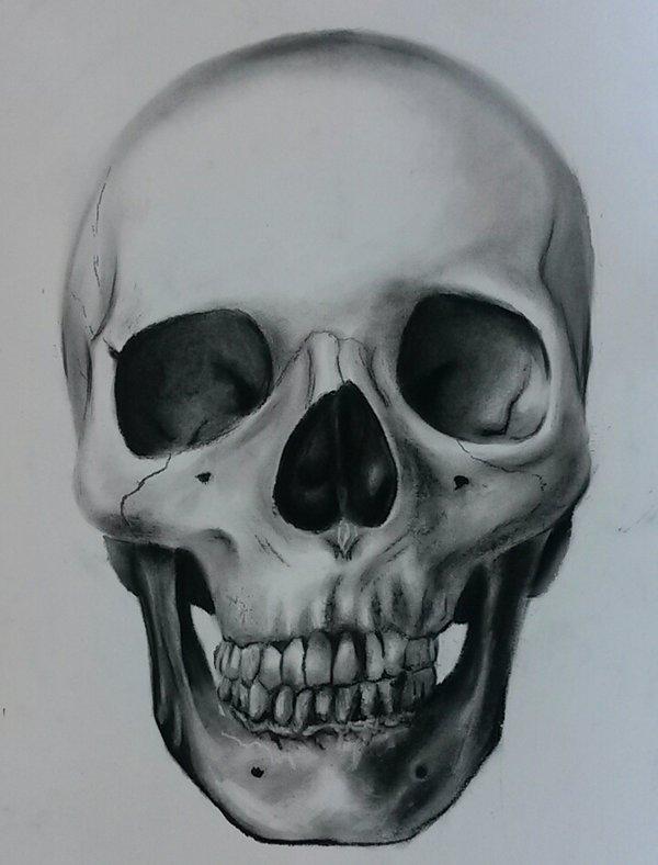 600x788 Skull